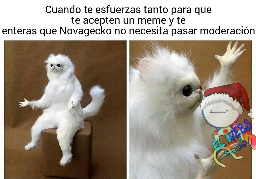 Pinshe Novagecko - meme