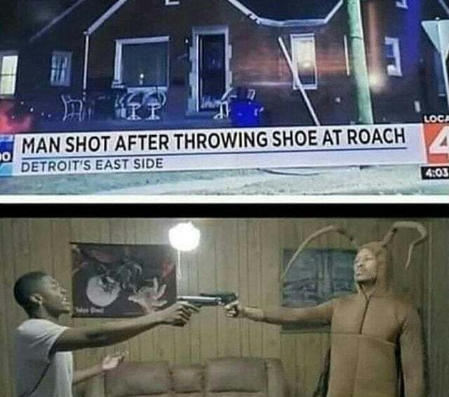 Man shot after throwing shoe at roach - meme