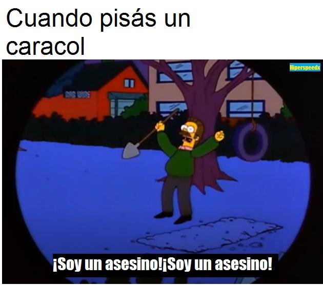 tac_ilapi - meme