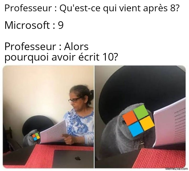 Quelque chose à ajouter, Microsoft ? - meme