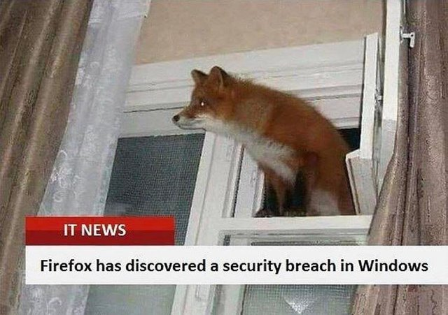 Firefox has discovered a security breach in Windows - meme