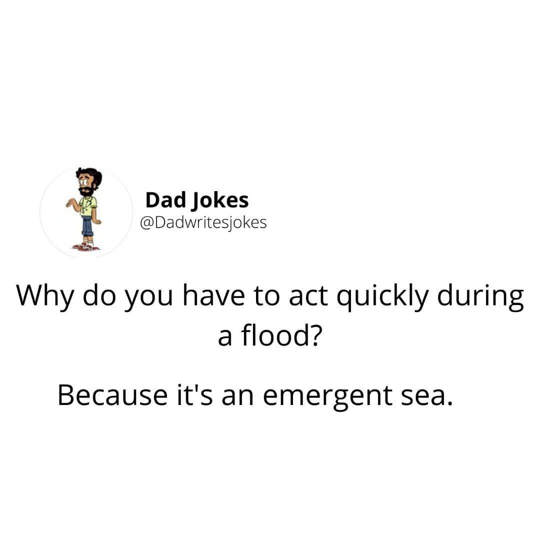 MORE DAD JOKESSSS - meme