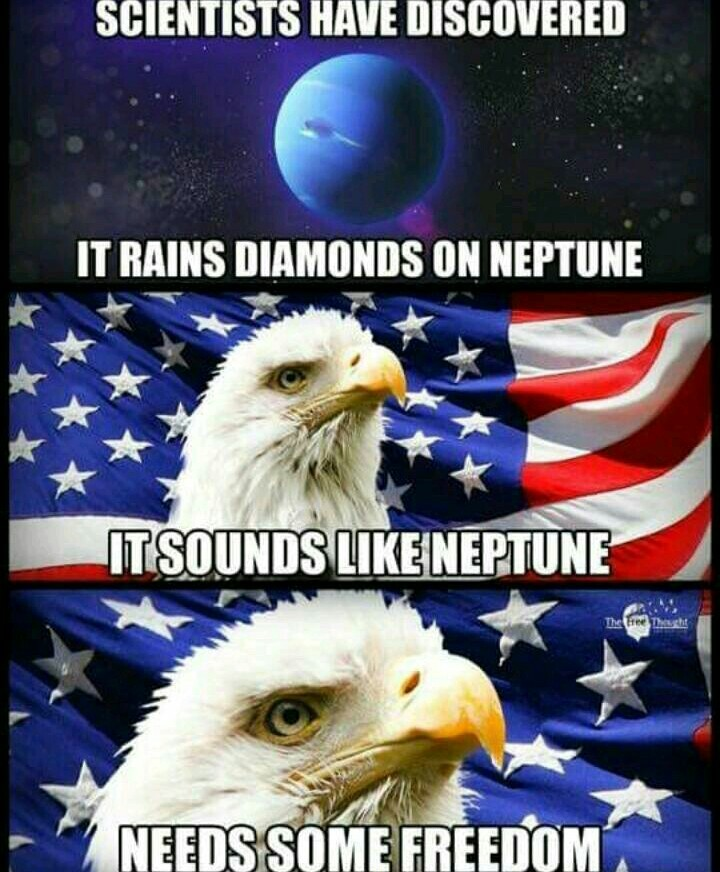 FREEEEDOMMM - meme