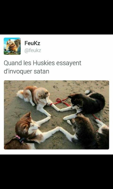 Bougabougabougaoubagabou - meme