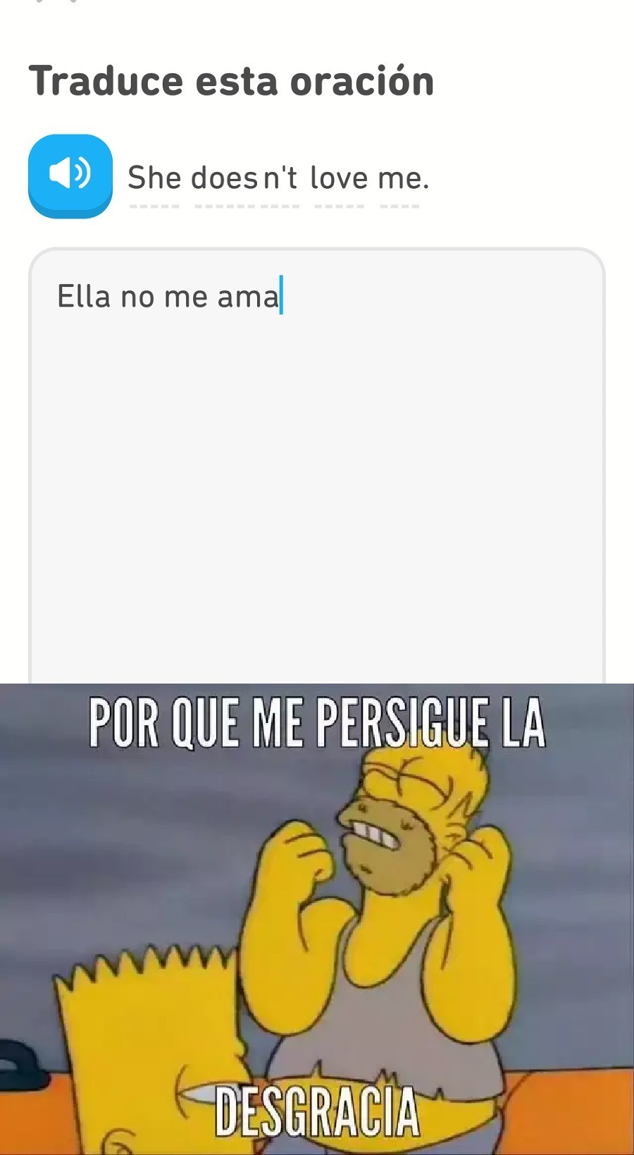 Duolingo - meme