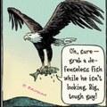 Killingbird