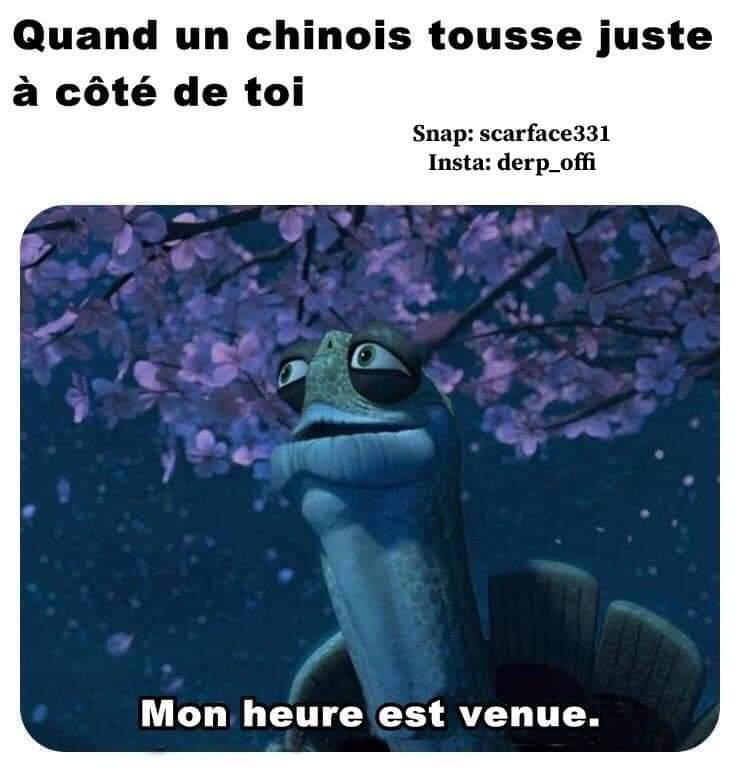 1er cas en France - meme
