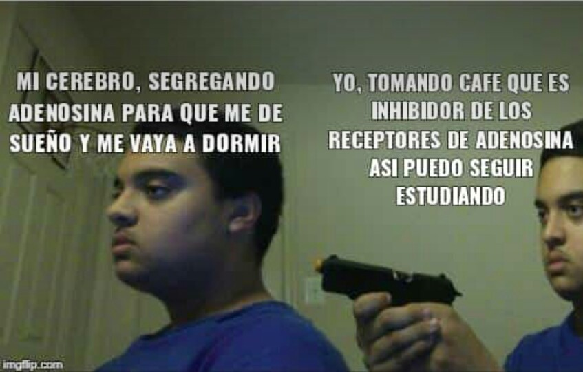 Aguante la Speed - meme