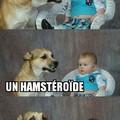 Hamstéroïde