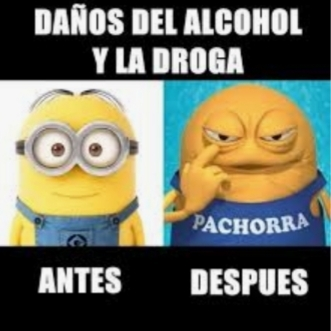 Pachorra es un minion xd - meme