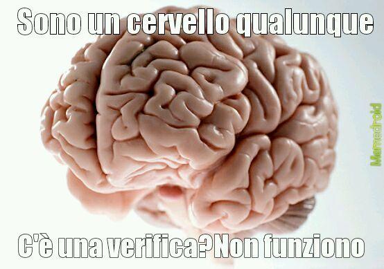 Cervellocoglione - meme