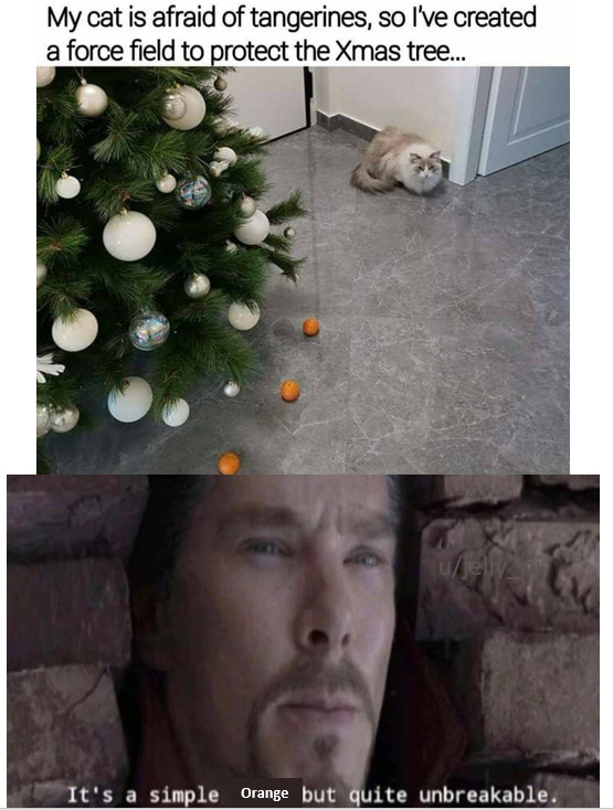 My cat is afraid of tangerines - meme
