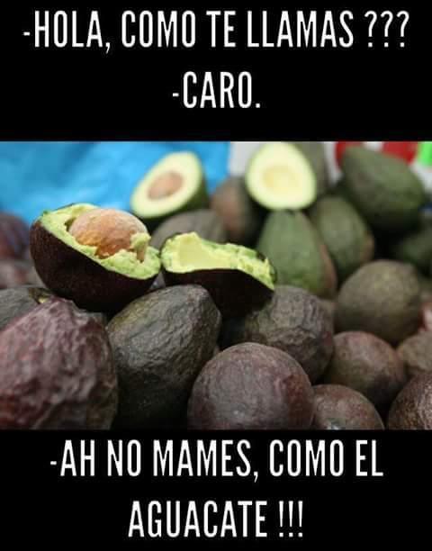 Aguacate 5 - meme