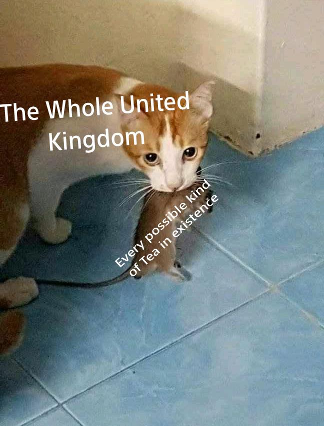 HAIL BRITANNIA - meme