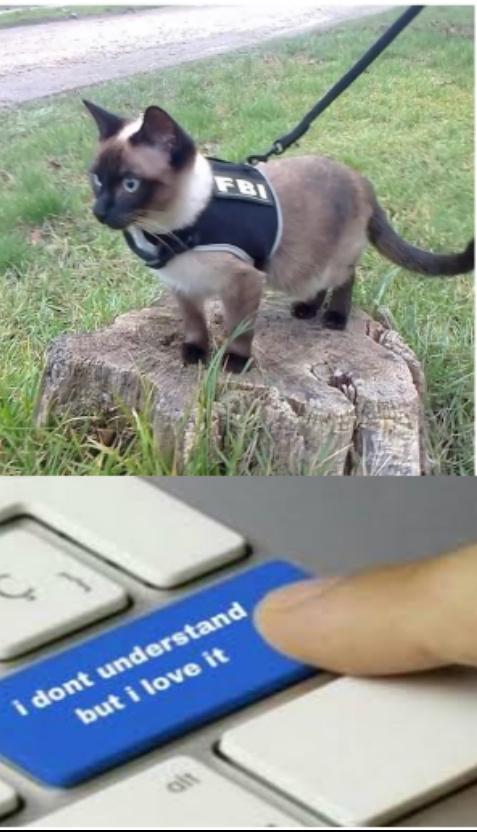 Feline Bureau of Investigation - meme