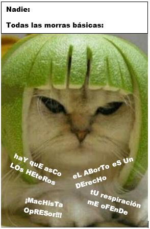 ESTAS ASUMIENDO MI GENERO - meme