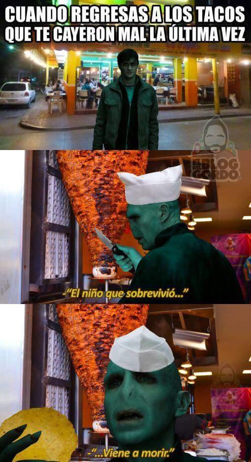 aveda kedabratifoidea - meme