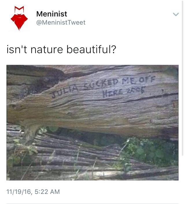 sure is - meme