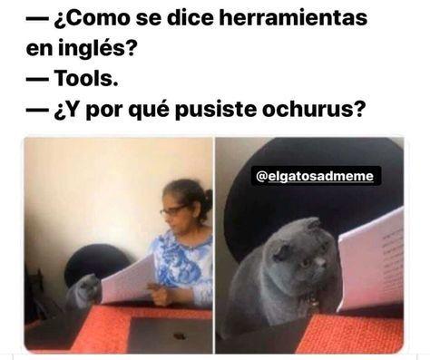 Ochurus - meme