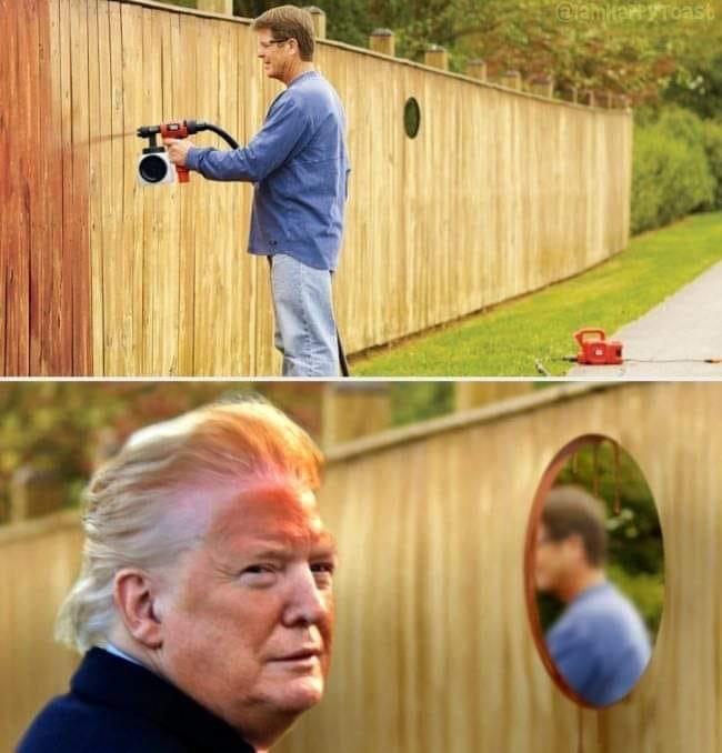 Dolnad - meme