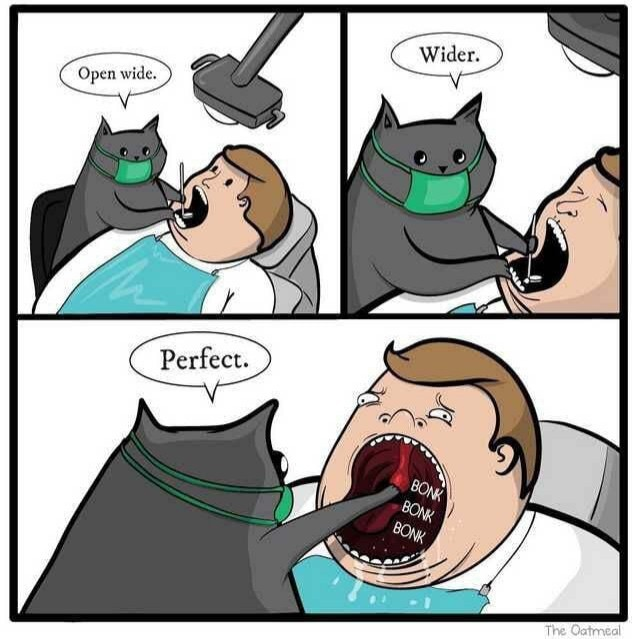The real reason cats aren't dentists - meme