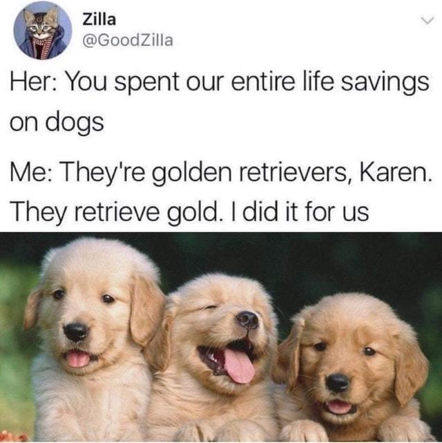 Golden Retrievers - meme