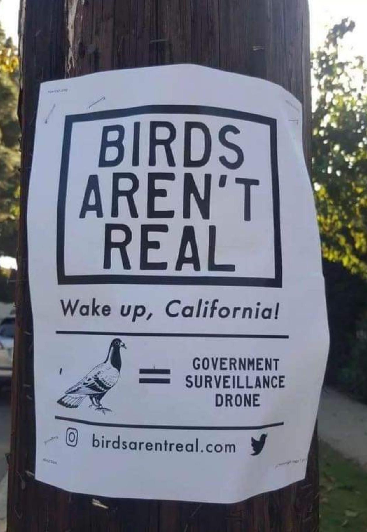 WaKe Up CaLiFoRnA - meme