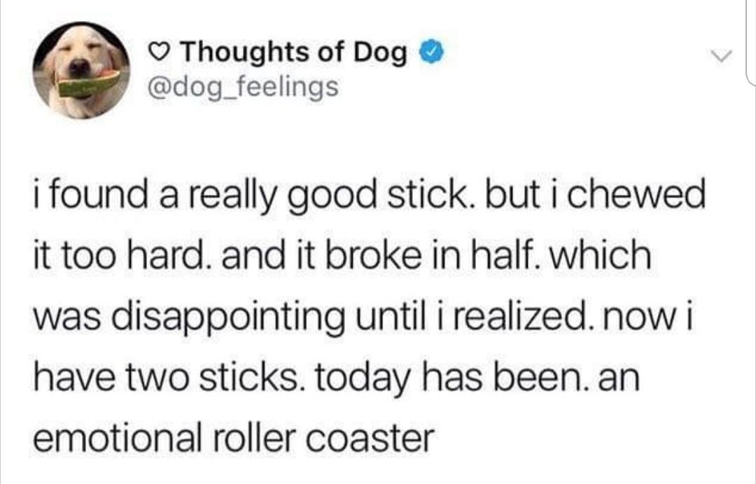 Sad doggo, happy doggo - meme
