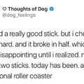 Sad doggo, happy doggo