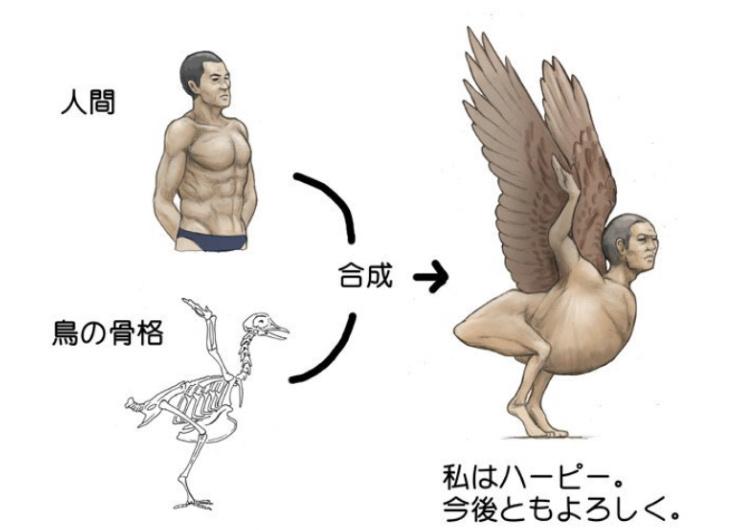 HUMAN ANIMAL PART 3 - meme