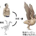HUMAN ANIMAL PART 3