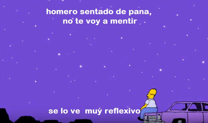 Homero de pana - meme