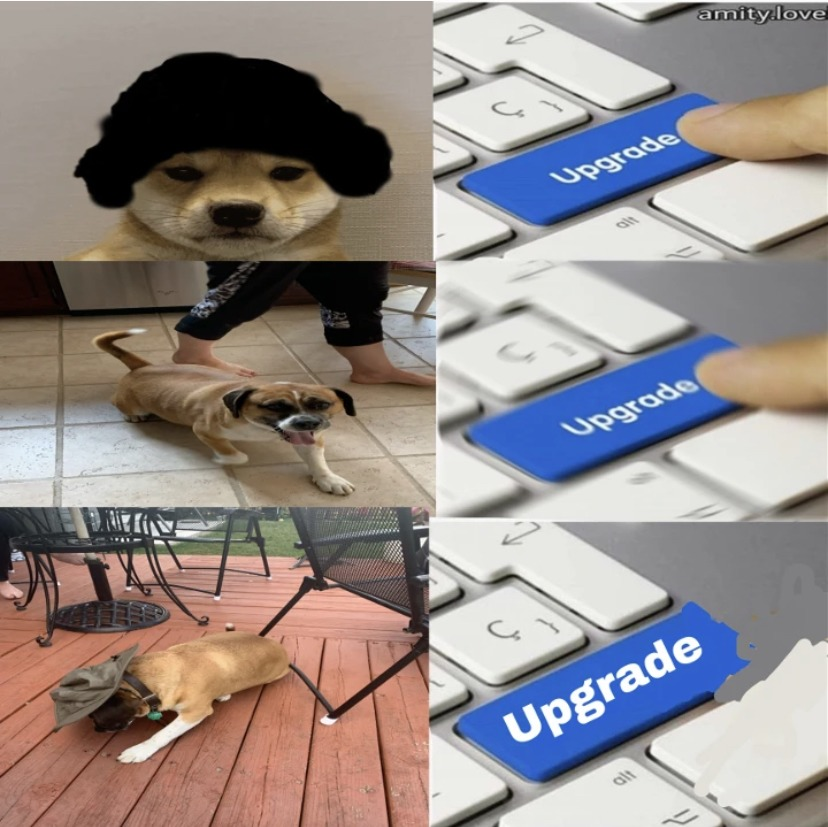 My own meme last two pictures are my doggo