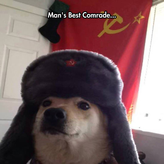 it's time for some communism - meme