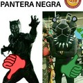pantera cor-de-preto