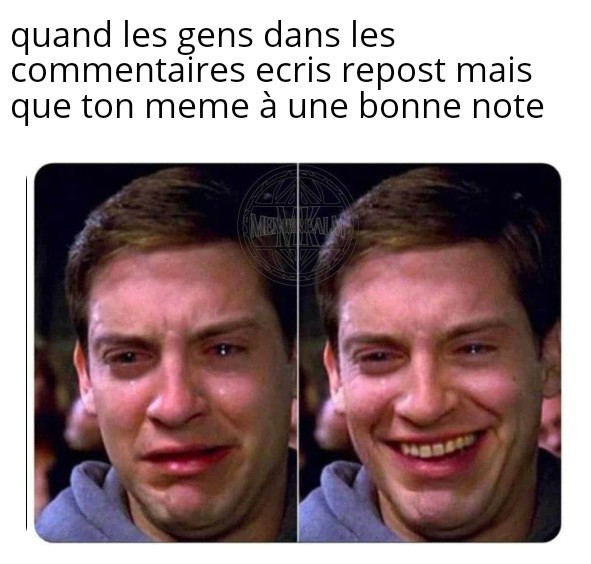 Voici un post originale - meme