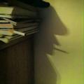 Gopnik in the shadows