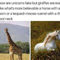 How can unicorns be faka but giraffes real?