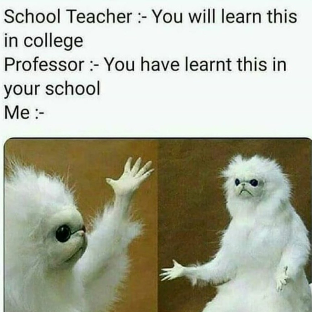 You have learnt this in school - meme