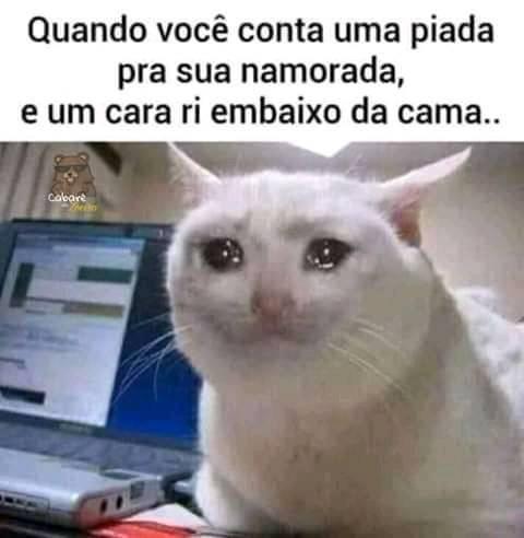 vish - meme