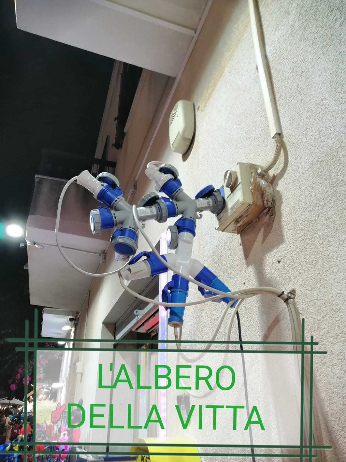 Albero - meme
