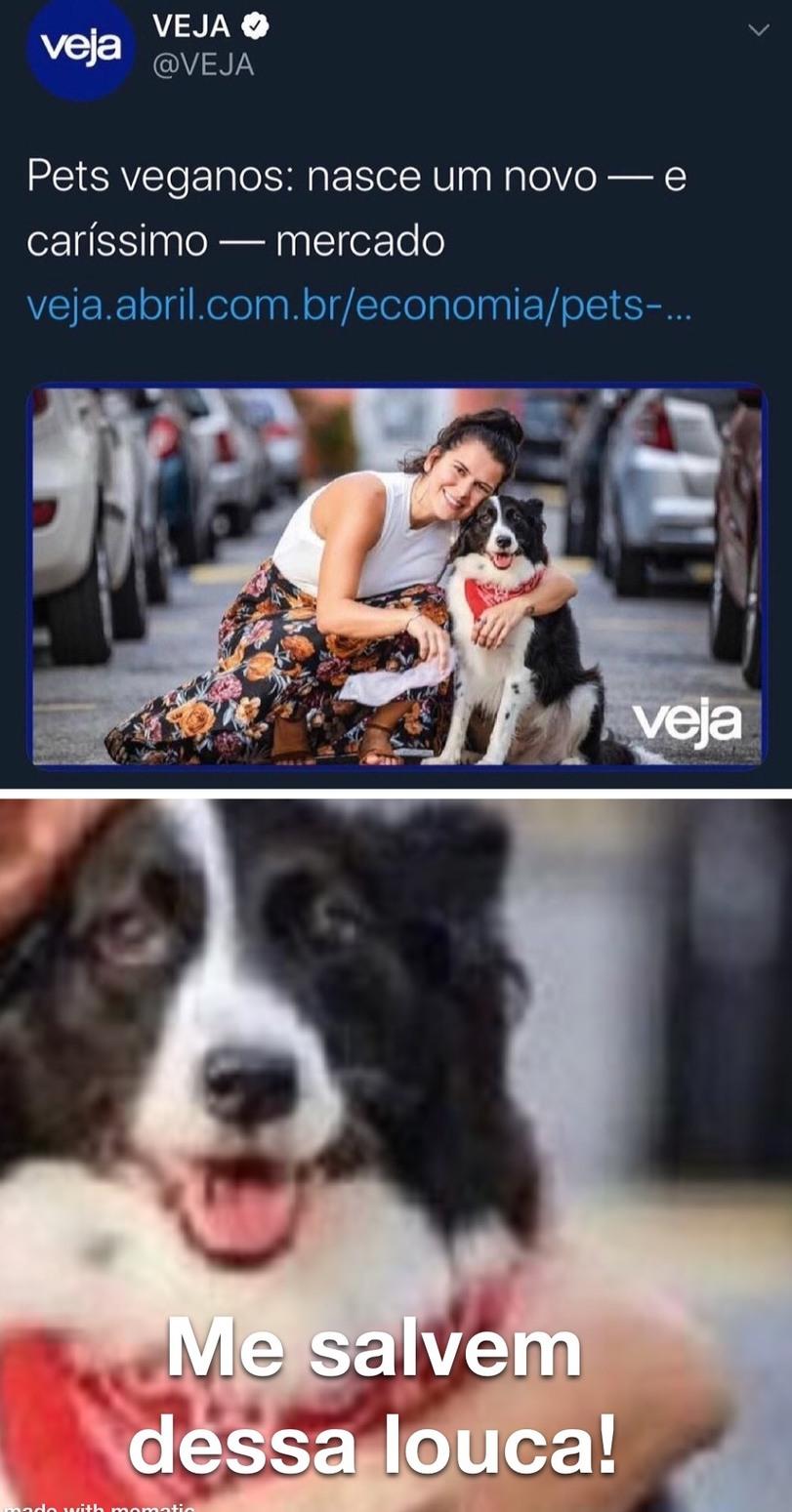 O nome disso é crueldade animal - meme