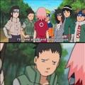 shitist character in Naruto is                Sakura