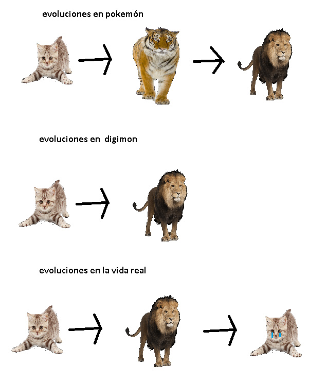 evolucion - meme