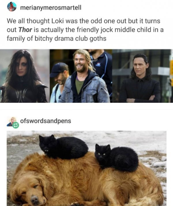 Again thor is adopted - meme