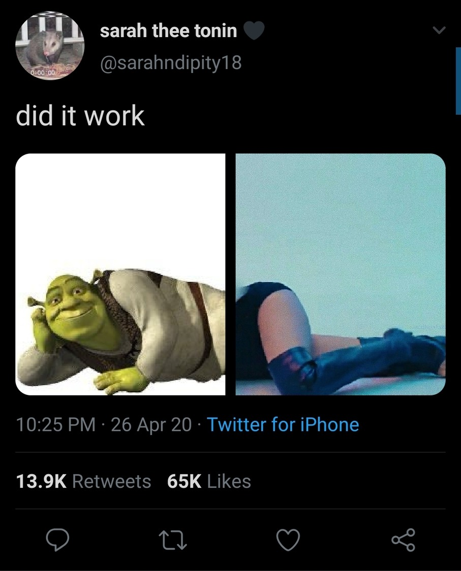 Damn shrek is looking good today. - meme