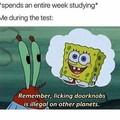 Spongebob may-may