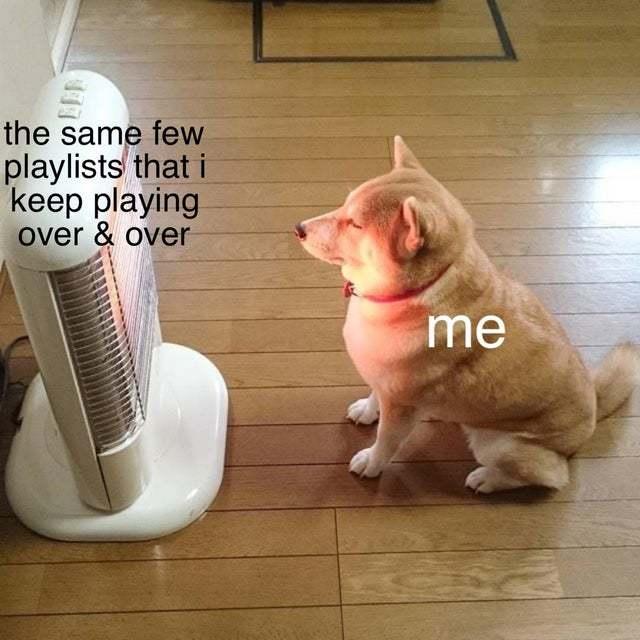 I love my playlist - meme