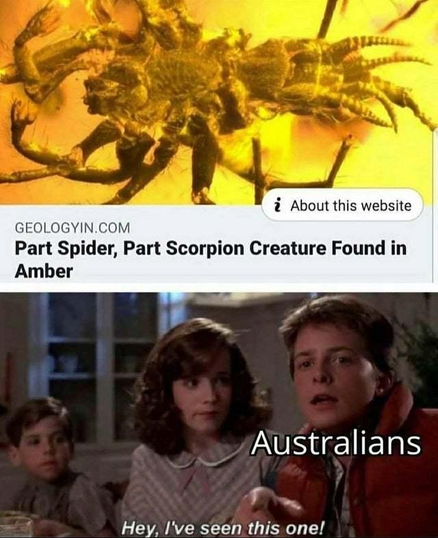 Part spider, part scorpion creature found in amber - meme