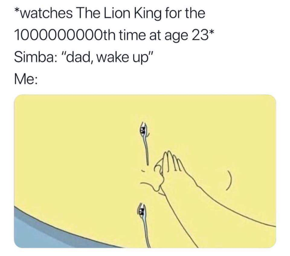 The Lion King 1994 - meme